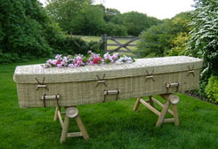 Eco Friendly Coffin 1