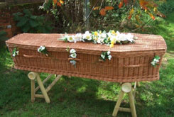 Eco Friendly Coffin 2